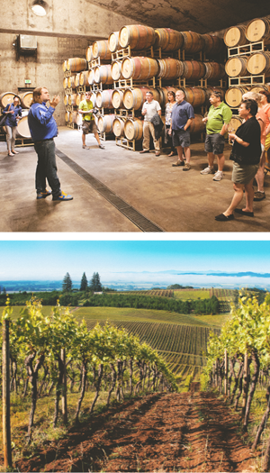 Visit the Wineries in McMinnville, Oregon