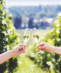 Sparkling Wines in McMinnville, Oregon