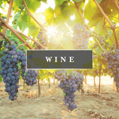 Willamette Valley Vineyards & Wineries Near McMinnville, Oregon
