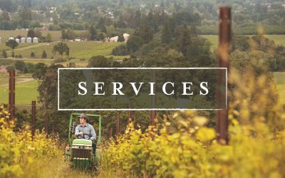 Update a Services Listing on VisitMcMinnville.com