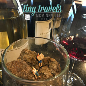 Tiny Travels McMinnville Oregon
