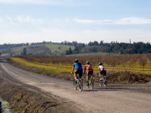 Cyclists riding on a gravel road