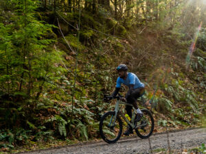 Cyclist riding a bike through the forest
